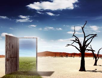 Как добиться устойчивого роста компании?